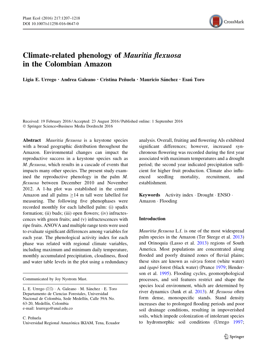 Mesa De Cultivo Amazon Pdf Climate Related Phenology Of Mauritia Flexuosa In The