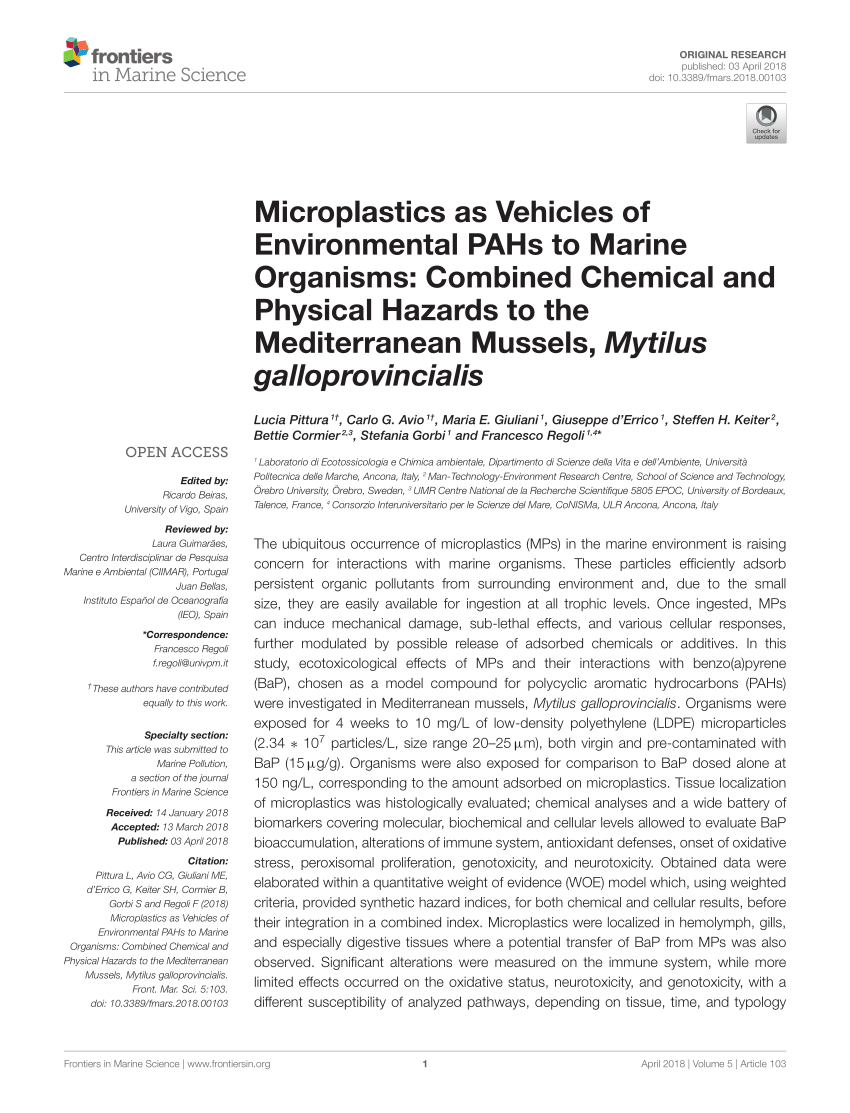Pittura Contro L' Pdf Microplastics As Vehicles Of Environmental Pahs To Marine