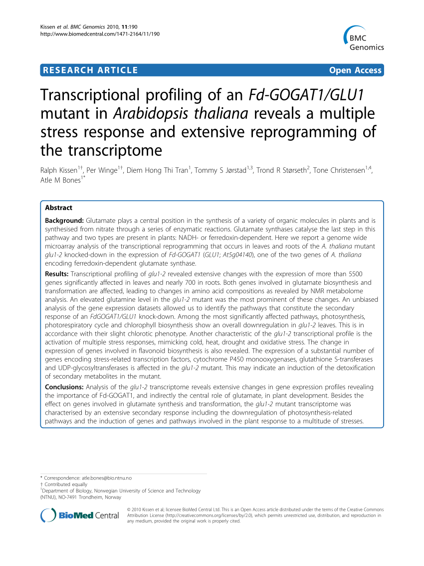 M Line Kopfkissen Metabolic Pathways Covered By The Transcriptional Changes