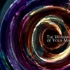 The Windmill Of Your Mind - From Theme