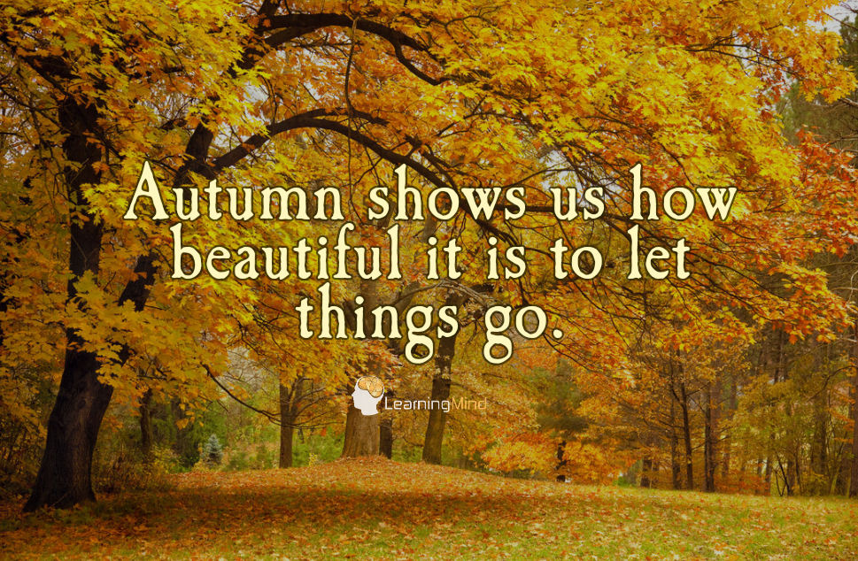 Poets Of The Fall Wallpaper 5 Reasons Why Introverts Love Autumn Learning Mind