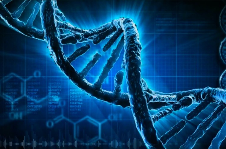 How To Put A Gif As Your Wallpaper On Iphone The How Amp Why Radiation Vs Human Dna