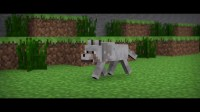 Minecraft Animation - Wolf Walk - YouTube
