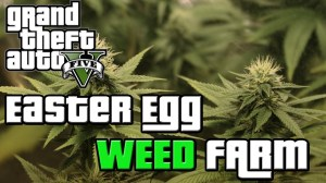 GTA 5 Easter Egg: Secret Weed Farm Location (GTA V) ♠ - YouTube