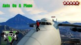 GTA Cargo Plane Funny Moments - GTA 5 Ants On A Plane - Grand Theft