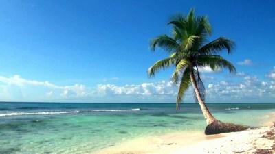 Relaxing Full HD Film Ocean Live Wallpaper Dreamscene - YouTube