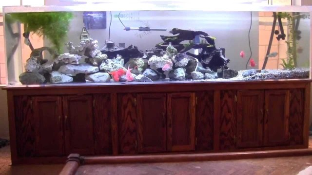 240 gallon aquarium - 240 gallon acrylic fish tank aquarium YouTube 2017 - Fish Tank Maintenance
