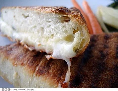 grilled cheese sammy