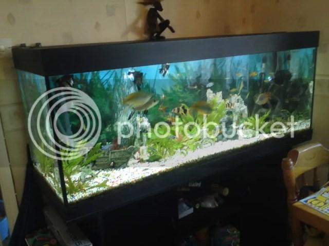 Juwel Rio 400 Aquarium & Stand 5 Ft Complete Fish Tank Setup 400Li