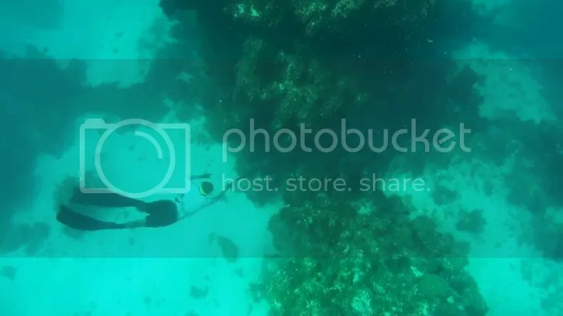 Tate aiming underwater