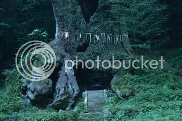 photo Takeo-Shrine-Okusu-4.jpg