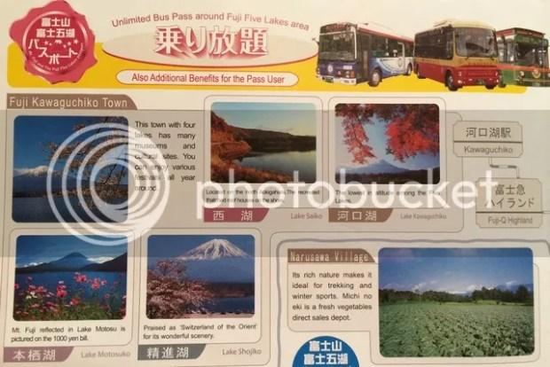 photo 08EE3358-6E37-4C1E-8E79-729D85DC5080.jpg