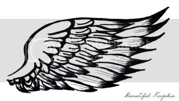 My illustrated wings