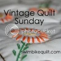 Swim Bike Quilt