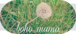photo thebohomama_zpsc5bde9f7.jpg
