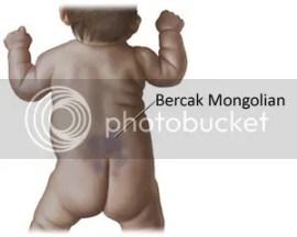 Bercak Mongolian