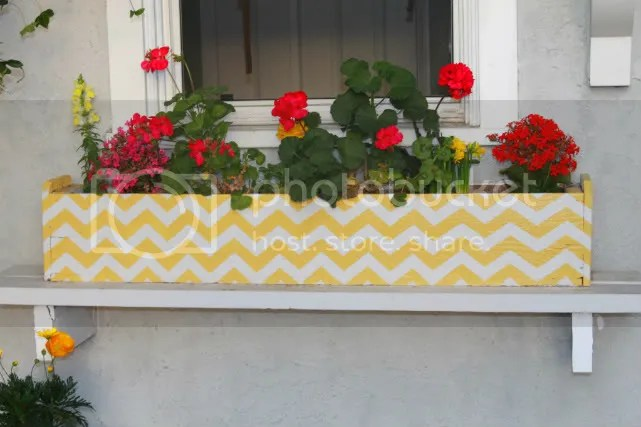 chevron decor