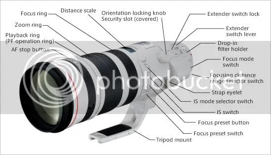 EF 200-400mm f/4L IS 1.4x