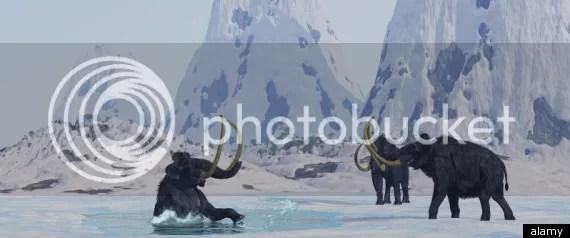 Mammoth berbulu yang hendak dihidupkan kembali oleh ilmuwan