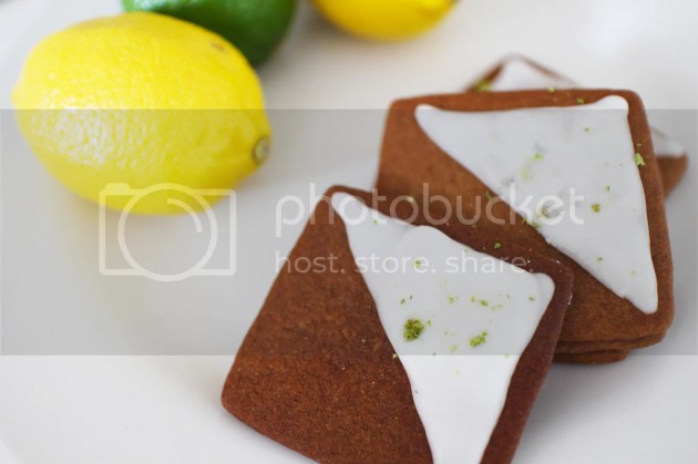 photo Ginger amp Lime Biscuits 6_zpsozctiwdc.jpg