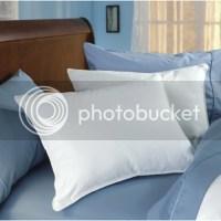 Restful Nights Trillium Gel Fiber Standard Polyester Hotel ...