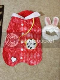 Alice In Wonderland Rabbit Costume For Dogs | www.pixshark ...
