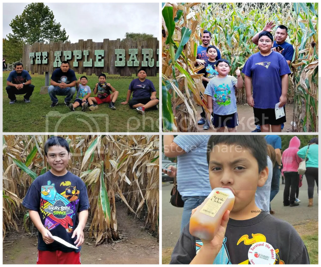 My Silly Little Gang Lyman Orchards visit