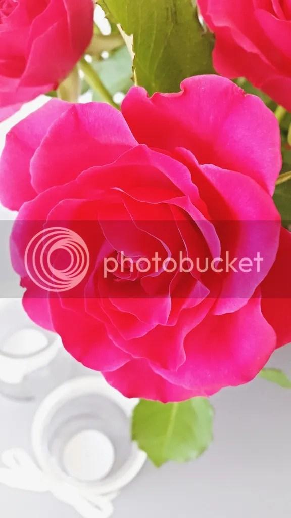 photo a69747a9-b118-4970-be6a-f12baaed4a67_zpst3rgfykx.jpg