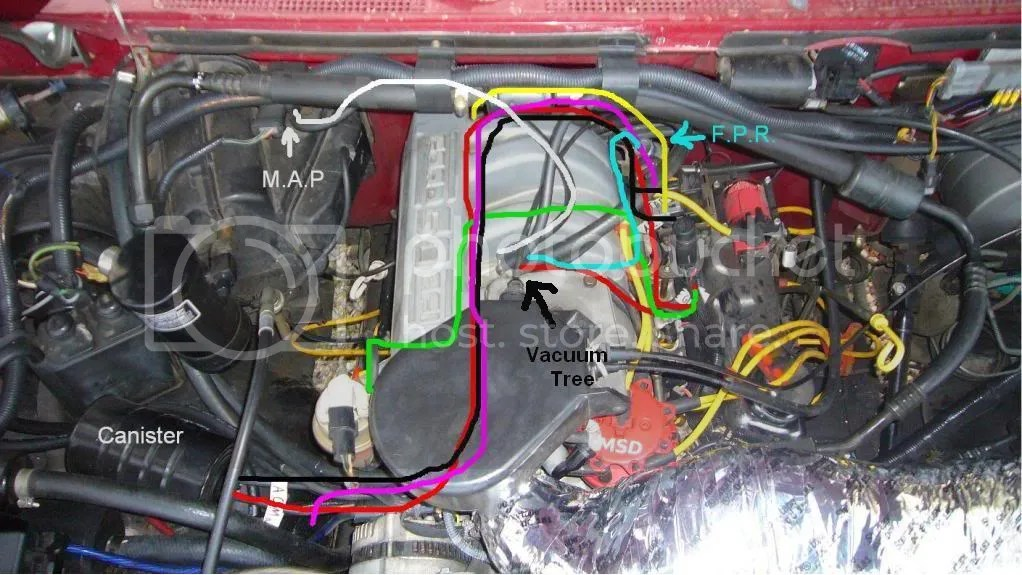 1989 Ford F150 Engine Diagram Wiring Diagram 2019