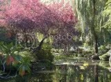 The Butchart Gardens - Vancover Island BC 2005