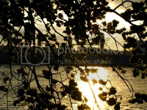 Hudson River sunset, spring