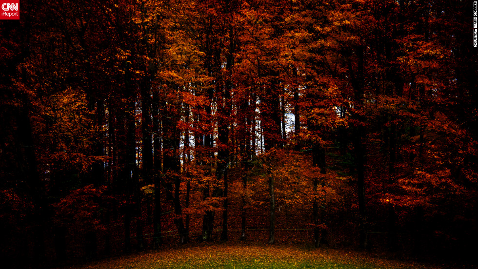 Occult Wallpapers Hd Autumn Color Around The World Cnn Com