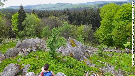 Hunsrück-Hochwald: Europe's newest national park.