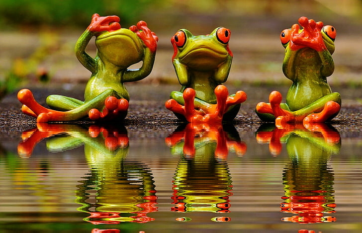 Royalty-Free photo Three green frogs on body of water PickPik - frog body