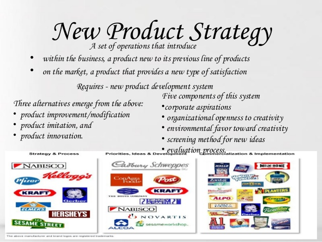 product marketing plan examples - Maggilocustdesign - product plan template