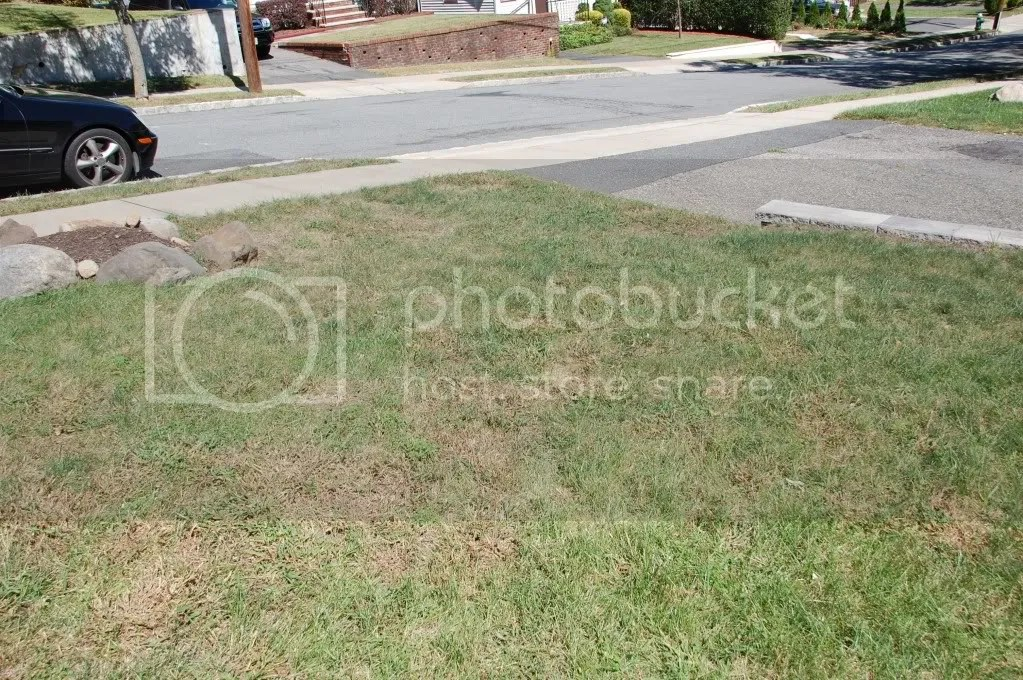 Help Reseeding Lawn In Northern, Nj | Lawnsite
