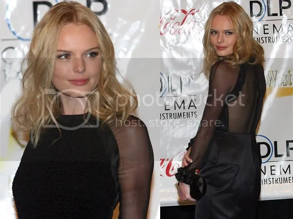 Kate Bosworth in the sheer trend