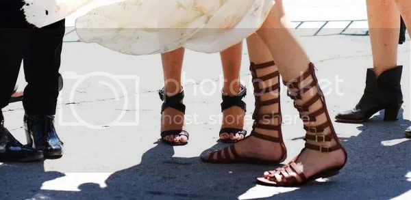Gladiator Sandals Fashion Shoe Trend