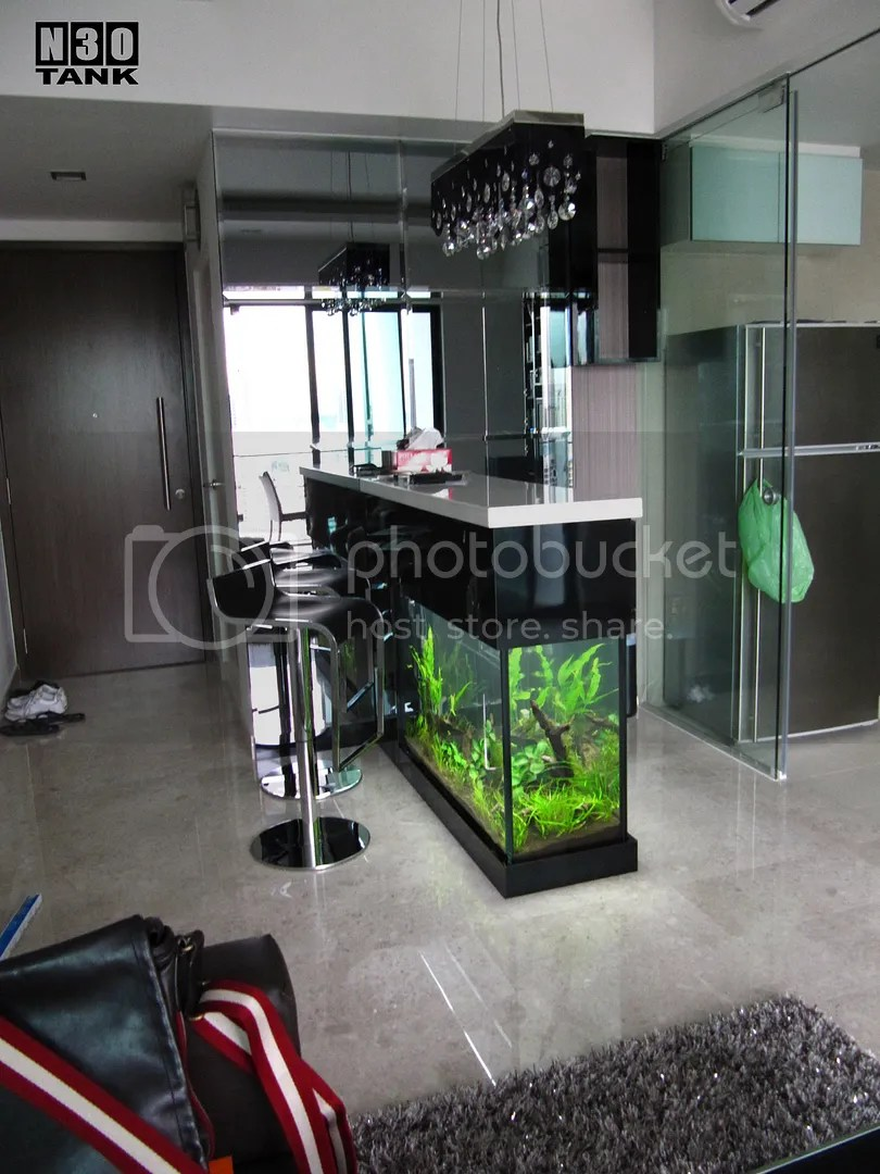 N30 Tank 5ft Long Bar Counter Top Aquarium Tank Photo by weeyang19 | Photobucket