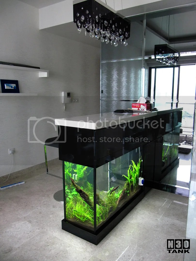 N30 Tank 5ft Long Bar Counter Top Aquarium Tank Pictures Images Photos Photobucket