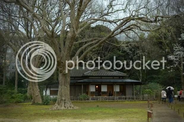 photo riku6.jpg