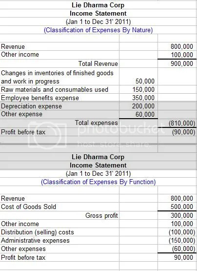 Income Statement Components and Presentation Under IAS 1