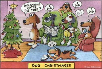 christmas dogs photo: dogs dog-christmas.jpg