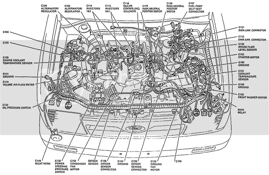 1998 ford festiva wiring diagram