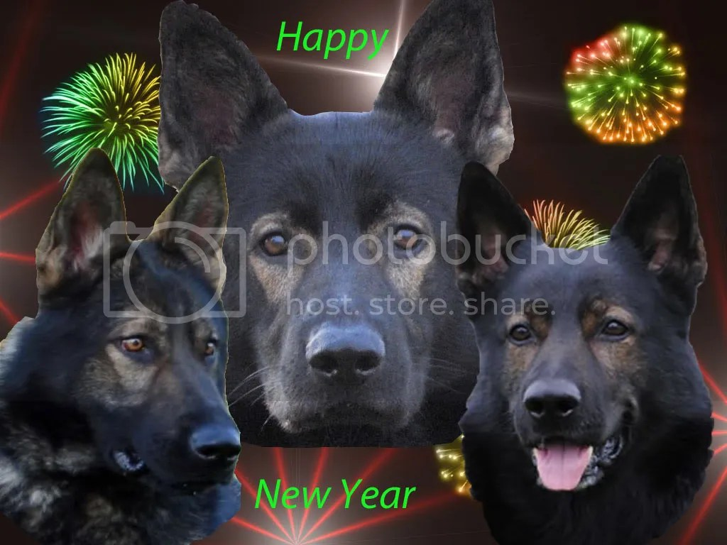 happynewyearjpghappy20new20years20from20german20shepard . 1024 x 768.Happy New Year Profile Pics