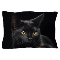 Black Cat Bedding | Black Cat Duvet Covers, Pillow Cases ...
