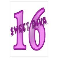 16Th Birthday Posters   16Th Birthday Prints & Poster Designs