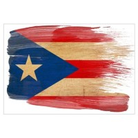 Puerto Rico Flag Wall Art Poster