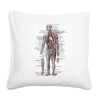 Anatomy of the Human Body Square Canvas Pillow by listing ...