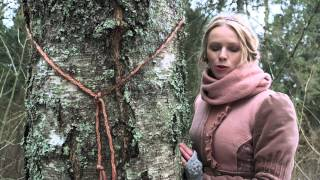 Kristiina Ehin: Paluküla hiis